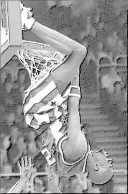 Terrain de basket dimensions officielles for Terrain avec cu c est quoi
