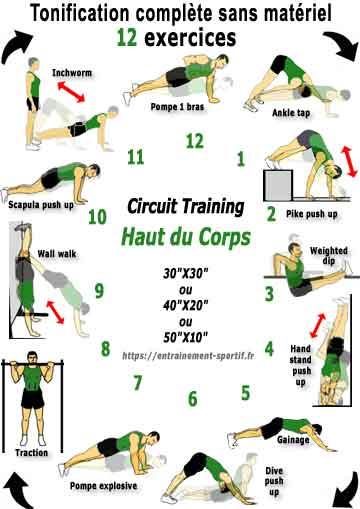 programme en circuit pour renforcer les muscles du haut du corps