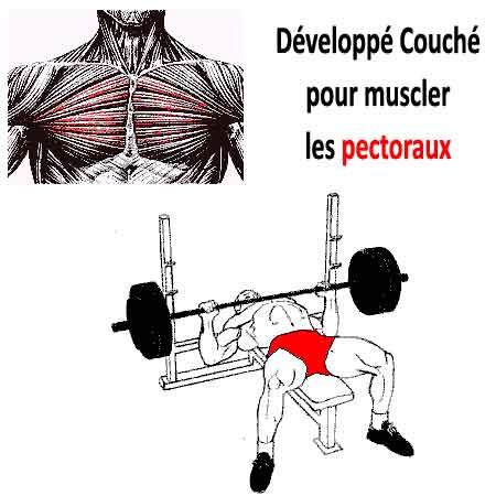 Developpe Couche 7 Exercices Et Variantes Pour Vos Pectoraux