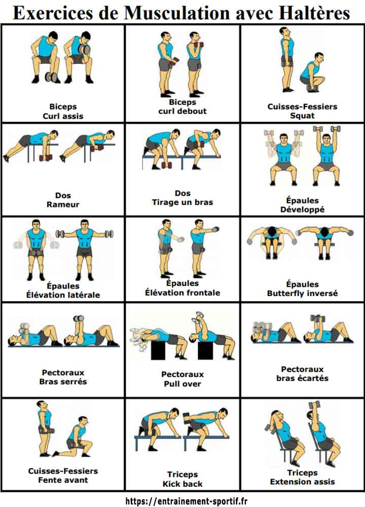 15 dumbbell exercises