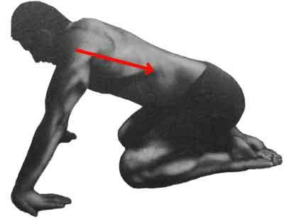 canal carpien étirement du poignet