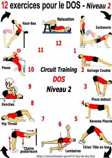 Programme de 12 exercices pour le dos niveau 2 pour pratiquant débrouillé