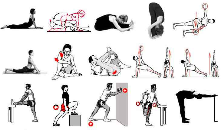 gainage dorsal ou soulev de hanche contre le mal de dos. Black Bedroom Furniture Sets. Home Design Ideas
