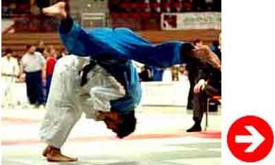 judo techniques de mains et de bras