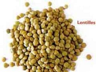 légumes secs ou légumineuses lentilles