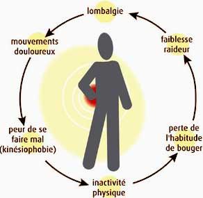 Maladies de l'Os et articulations: Lombalgie et multifidus
