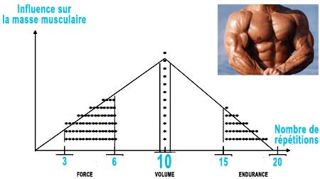 Prise de masse programme musculation volume puissance - Programme alimentaire prise de masse musculaire ...