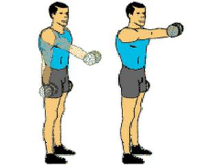 Musculation des épaules - 10 exercices et 5 programmes