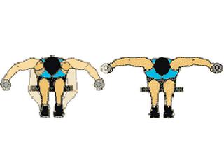Programme musculation epaule avec haltere - Vigilance envers l ... 4a79a601f3a