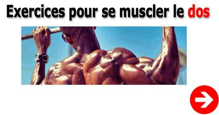 exercices pour se muscler efficacement le dos