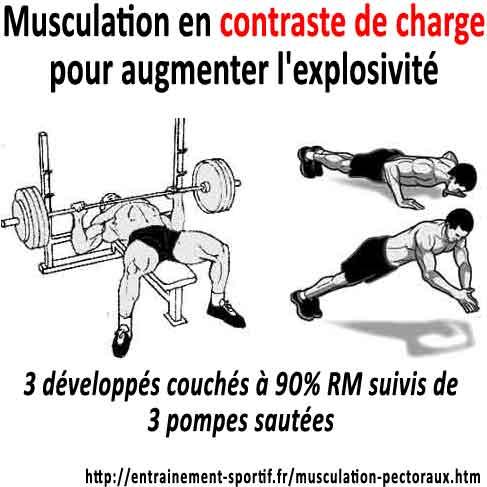 Très Musculation des Pectoraux 15 Exercices Puissance ou Masse XW06