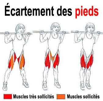 musculation squat methodes