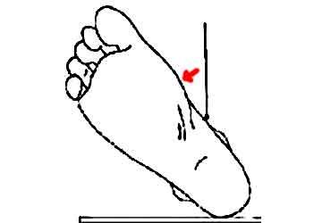 etirements loge interne tibia par rotation externe du pied