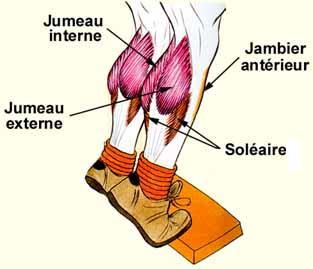 course a pied douleur mollet