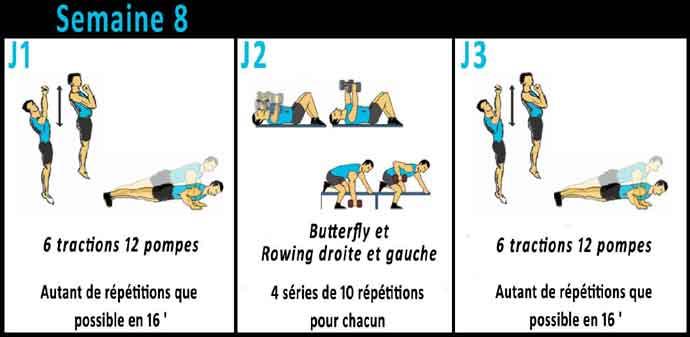 programme de musculation pour debutante en salle pdf